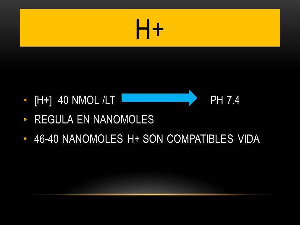 H+ [H+] 40 NMOL /LT PH 7.4 REGULA EN NANOMOLES